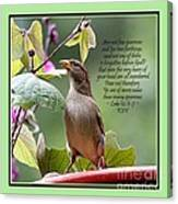 Sparrow Inspiration From The Book Of Luke Canvas Print