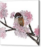 Sparrow Art  Canvas Print