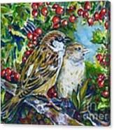 Sparrows On The Hawthorn Canvas Print