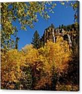 Spearfish Canyon In Autumn Color Canvas Print