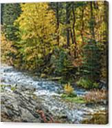 Spearfish Creek Autumn Canvas Print