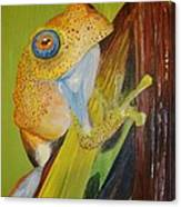 Speckled Frog Canvas Print