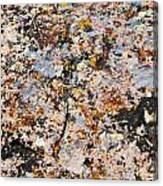 Specks 4 Canvas Print