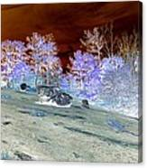 Spectral Wilderness And Copper Sky Canvas Print