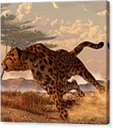 Speeding Cheetah Canvas Print
