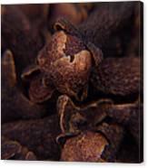 Spicy Close-ups Cloves Canvas Print