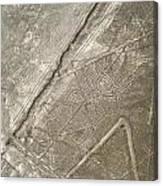Spider Geoglyph Canvas Print