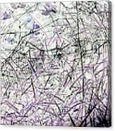 Spider Web Art 3 Canvas Print