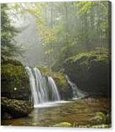 Spilling Down Canvas Print