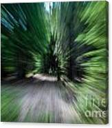 Spinning Through The Woods Canvas Print