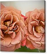 Spirit Dance Roses Art Prints Canvas Print