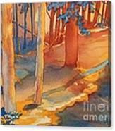 Spiritual Forest Canvas Print