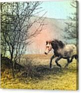 Spiritus Equus Canvas Print