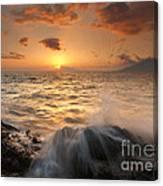 Splash Of Paradise Canvas Print
