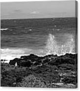 Splashing On The Shore Canvas Print