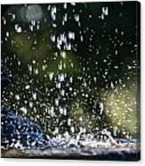 Splashing Canvas Print