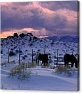 Splendor Of Winter  Canvas Print