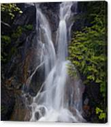 Split Top Falls Canvas Print