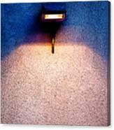 Spot Of Warming Light Canvas Print