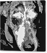 Spotted Dog Black And White Canvas Print