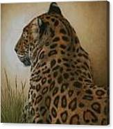 Spotted Elegance Canvas Print