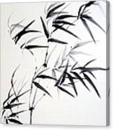 Sprig Of Bamboo Canvas Print