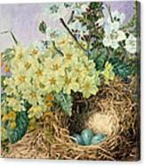 Spring, 1879 Canvas Print
