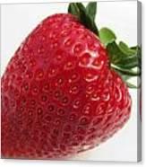 Spring 2013 Strawberry Canvas Print