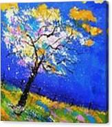 Spring 563140 Canvas Print
