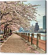 Spring Along The East River Canvas Print