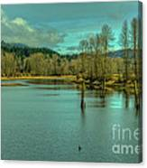 Spring At The Nicomen Slough Canvas Print