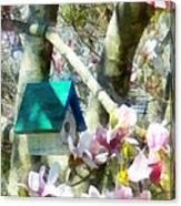 Spring - Birdhouse In Magnolia Canvas Print