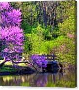 Spring Blossoms On Lake Marmo Canvas Print