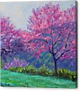 Spring Blossoms On Mill Mountain Canvas Print