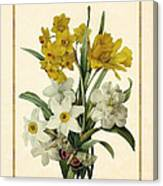Spring Bouquet Of Daffodils And Narcissus With Butterfly Vertical Canvas Print