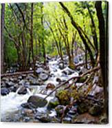 Spring Cascade Of Water From Bridal Veil Falls In Yosemite Np-2013 Canvas Print