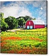 Spring Charm In The Hill Country Canvas Print