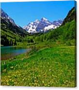 Spring Colors In Maroon Bells Canvas Print