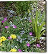 Spring Cottage Garden Canvas Print