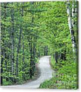 Spring Country Road Canvas Print