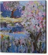 Spring Crabapples Canvas Print