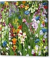 Spring Explosion Canvas Print