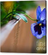 Spring Flowers I Canvas Print