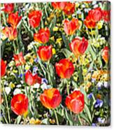 Spring Flowers No. 1 Canvas Print