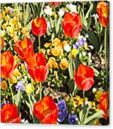 Spring Flowers No. 5 Canvas Print