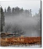 Spring Fog Canvas Print