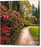 Spring Footpath Canvas Print