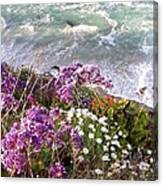 Spring Greets Waves Canvas Print