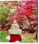 Spring Hydrant Canvas Print