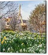 Spring In Boston Canvas Print